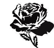 Rosa nera Fotografia Stock