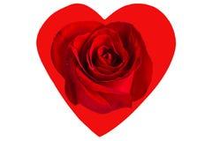 Rosa no coração Fotos de Stock Royalty Free