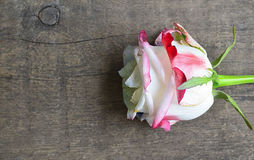 Rosa no fundo de madeira velho para o dia do ` s do Valentim com espaço da cópia Valentine Rose foto de stock