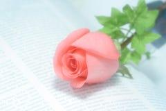 Rosa no livro Fotos de Stock