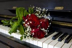 Rosa no piano - cartão do vermelho Fotos de Stock