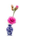 Rosa nylontygblomma i blå keramisk vas på isolatvitbakgrund Arkivbilder