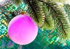 Rosa nytt års bollar på en filial av jul tree.close upp på en blå bakgrund Fotografering för Bildbyråer
