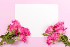 Rosa nytt steg filialer och vitbokkortet - tomt utrymme för text som isolerades på pastellfärgad bakgrund arkivfoto