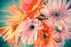 Rosa och orange Gerberablomma på tappning-retro bakgrund Royaltyfri Bild