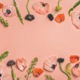 Rosa och röda blommakronblad, filialer och sidor, rosa bakgrund Royaltyfri Fotografi