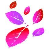 Rosa och rött falla lämnar illustrationen för gemkonst Arkivfoton
