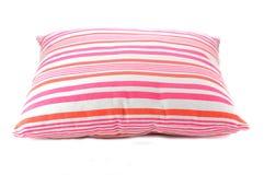 rosa och rosig kudde Arkivbilder