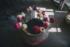 Rosa och vita blommor i en Grey Vase arkivbild