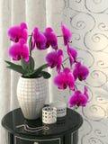 Rosa orkidé på nightstanden fotografering för bildbyråer