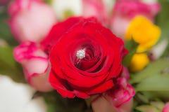 Rosa, pérola e anel de diamante Imagem de Stock Royalty Free