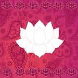 Rosa paisley och lotusblommabakgrund vektor illustrationer