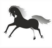 Rosa Pegasus Stockfoto