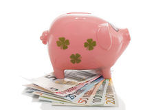 Rosa pengarpigg med euro Arkivfoton