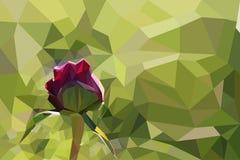 Rosa peon på polygonal bakgrund av gräs Royaltyfri Bild