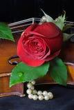 Rosa, perle e violino rossi Fotografie Stock Libere da Diritti