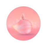 rosa petal Arkivfoto
