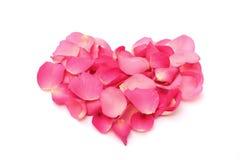 Rosa petals i en bilda av hjärta på vit Royaltyfri Fotografi