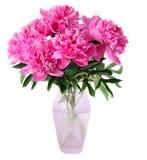 Rosa Pfingstrosenblumen im Vase lizenzfreie stockfotografie
