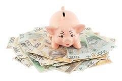 Piggy mit Geld Stockfoto