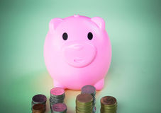 Rosa Piggy myntbank Royaltyfri Foto