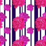Rosa pion Sömlös pattern3 Arkivbild