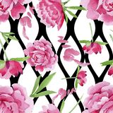 rosa pionblomma för vattenfärg Blom- botanisk blomma Seamless bakgrund mönstrar arkivbilder