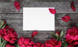 Rosa pionblommor och ark av papper över mörk träbakgrund med utrymme för text fotografering för bildbyråer