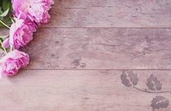 Rosa pioner blommar på en träbakgrund Utformat marknadsföra fotografi Utformat materielfotografi Bloggtitelradbild Royaltyfri Bild