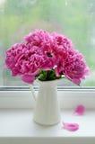 Rosa piongrupp på fönsterbräda Royaltyfria Bilder