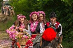 Rosa plockningfestival fotografering för bildbyråer