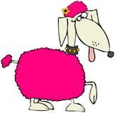 rosa poodle stock illustrationer