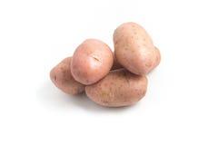 Rosa potatis Asterix royaltyfria bilder