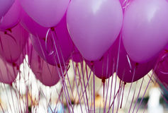 Rosa purpurrote Ballons Stockfoto