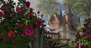 Rosa rampicante Fotografia Stock