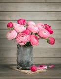 Rosa Ranunculus in einem Vase lizenzfreie stockfotografie