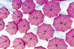 Rosa Regenschirm Stockfoto