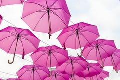 Rosa Regenschirm Lizenzfreie Stockbilder