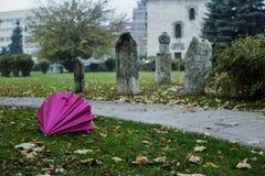 Rosa Regenschirm neben türkischem Friedhof Stockbild