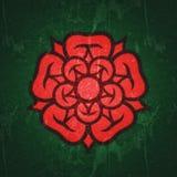 Rosa ( Regina di flowers) , emblema di amore, bellezza e perfezione royalty illustrazione gratis