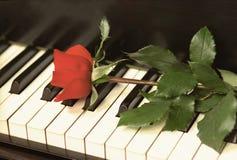 Rosa retro em chaves do piano Imagens de Stock