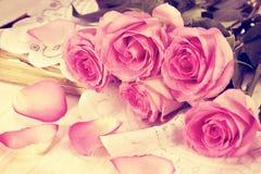 rosa ro Royaltyfri Fotografi