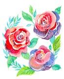 rosa ro royaltyfri illustrationer