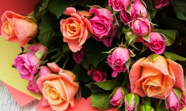 rosa ro för bukett royaltyfria bilder