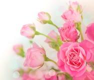 Ro Royaltyfria Bilder