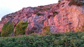 rosa rocks Arkivfoton