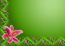 rosa romantiker för lilja stock illustrationer