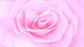 Rosa rosada descolorada del color Imagen de archivo