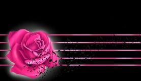 Rosa rosafarben und Anmerkungen Lizenzfreies Stockfoto