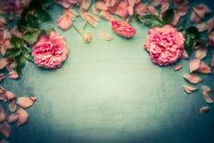 Rosa rosbakgrund på retro tonat sjaskigt chic trä, bästa sikt, tonat retro Arkivfoto